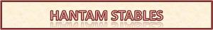 HANTAM STABLES