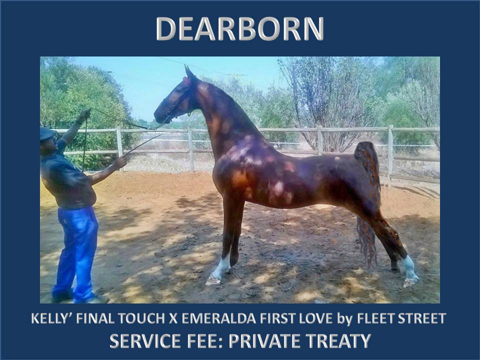 DEARBORN FOR WEBSITE