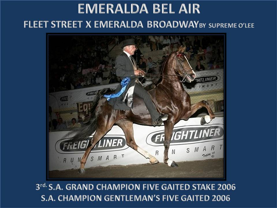 EMERALDA WEBSITE MARES 1