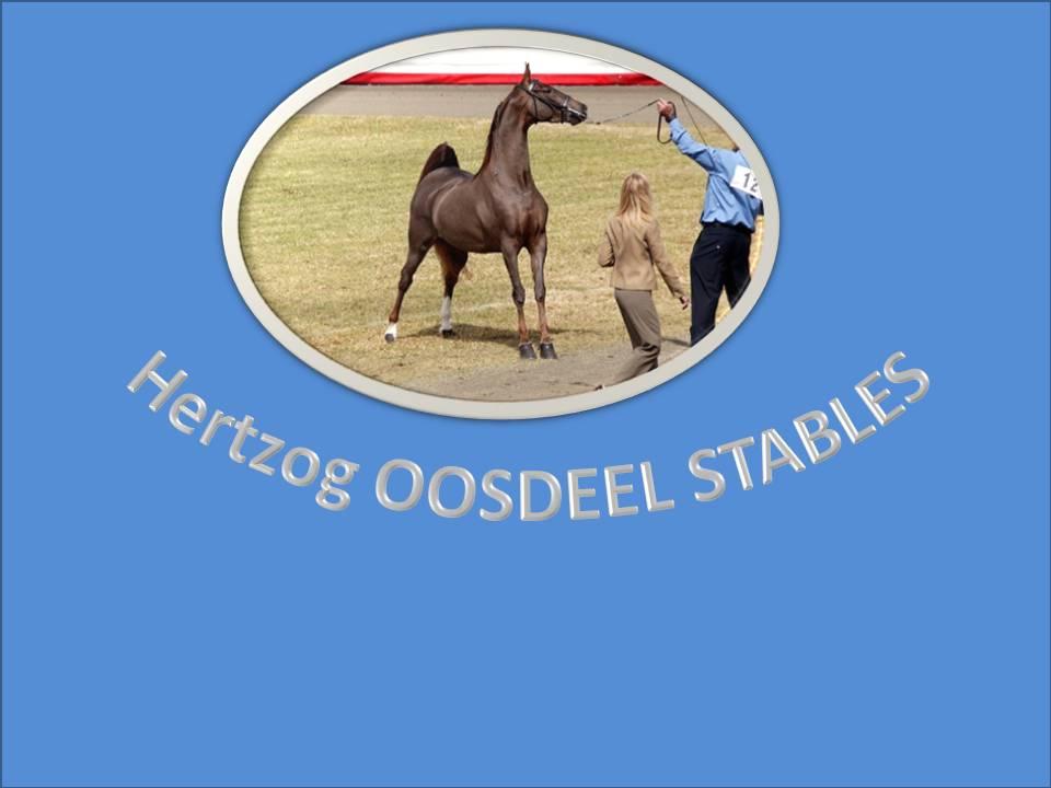 OOSDEEL 1